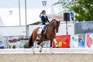 Kind Pleasure (v. Governor x Blue Horse Zack) foto door Timo Martis
